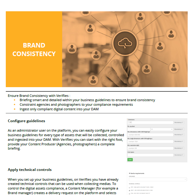 How to maintain your Brand consistency ?